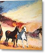 Dust In The Wind Metal Print by Judy Kay