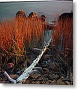 Eagle Lake At Autumn Metal Print by Juergen Roth