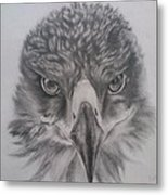 Eagle Metal Print by Lucy D