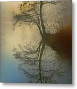 Early Morning Metal Print by manhART