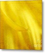 Elegance In Yellow Metal Print by Darren Fisher