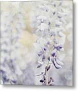 Elegant Wisteria Metal Print by Darren Fisher