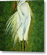 Ellie Egret Metal Print by Adele Moscaritolo