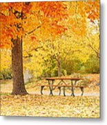Empty Park On A Fall Day Metal Print by Yoshiko Wootten