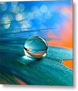 Enchanted Metal Print by Vesna Viden