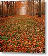 Endless Autumn Metal Print by Photodream Art