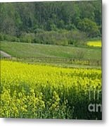English Countryside Metal Print by Ann Horn