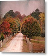Enter Fall Metal Print by Jai Johnson