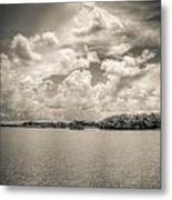 Everglades Lake 6919 Bw Metal Print by Rudy Umans