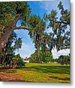 Evergreen Plantation II Metal Print by Steve Harrington