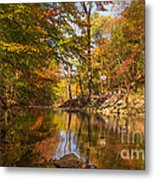 Fall At Valley Creek  Metal Print by Rima Biswas