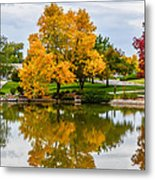 Fall Fort Collins-2 Metal Print by Baywest Imaging