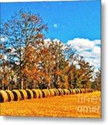 Fall Hayfield Metal Print by M Glisson