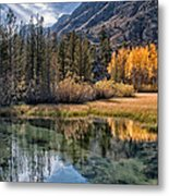 Fall Reflections Metal Print by Cat Connor