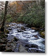 Fall Seclusion Metal Print by Skip Willits