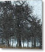 Fallen And Saved By Others Metal Print by Rosemarie E Seppala