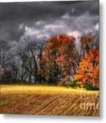 Falling Into Winter Metal Print by Lois Bryan