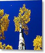 Falling Leaf Metal Print by Chad Dutson