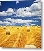 Farm Field With Hay Bales In Saskatchewan Metal Print by Elena Elisseeva