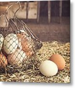 Farm Fresh Eggs Metal Print by Edward Fielding