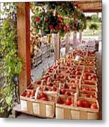 Farmstand Metal Print by Janice Drew