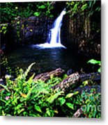 Ferns Flowers And Waterfall Metal Print by Thomas R Fletcher