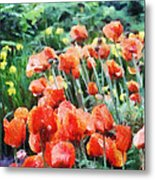 Field Of Flowers Metal Print by Jeff Kolker