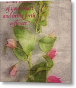 Find The Seed Metal Print by Cheryl Young