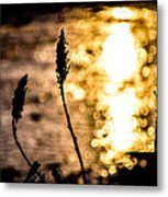 First Day Metal Print by Bob Orsillo