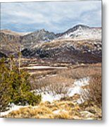 First Snow At Treeline Metal Print by Adam Pender