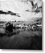 Flooded Grasslands And Mangrove Forest In The Florida Everglades Metal Print by Joe Fox