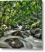 Flooded Small Stream  Metal Print by Dan Friend