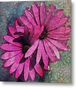 Floral Fiesta  Metal Print by Variance Collections