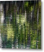 Florida Silver Springs River Metal Print by Christine Till