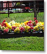 Flower Bed Metal Print by Holly Blunkall
