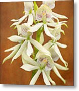Flower - Orchid - A Gift For You  Metal Print by Mike Savad