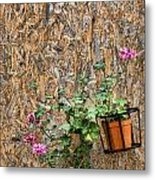 Flowers On Wall - Taromina Metal Print by David Smith