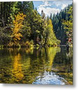 Fly-fishin Metal Print by Randy Wood