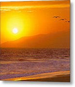 Flying Into The Sunset Metal Print by Robert Jensen
