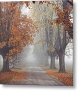 Foggy Driveway Metal Print by Wendell Thompson