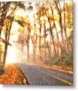 Foggy Fall Wonderland - Blue Ridge Parkway II Metal Print by Dan Carmichael