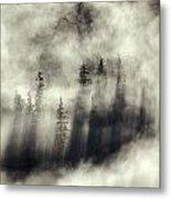 Foggy Landscape Stephens Passage Metal Print by Ron Sanford