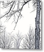 Foggy Morning Landscape - Fractalius 6 Metal Print by Steve Ohlsen