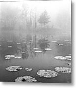 Foggy Morning Metal Print by Wendell Thompson