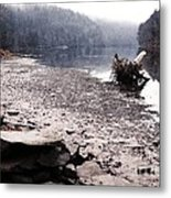 Foggy Shoreline Metal Print by HD Connelly