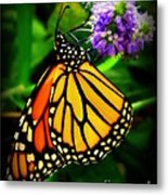 Food For Flight Metal Print by Lainie Wrightson