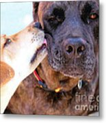 For The Love Of Dogs Metal Print by Janice Rae Pariza