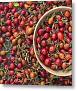 Foraged Rose Hips Metal Print by Tim Gainey
