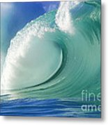 Force Of Nature Metal Print by Paul Topp