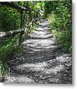Forest Path Metal Print by Dobromir Dobrinov